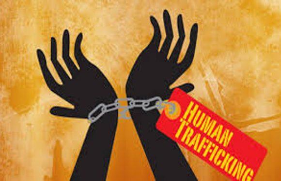 Garap Tenaga Orang,Jaksa Tuntut Herika Rahmadiah  Lima Tahun Penjara
