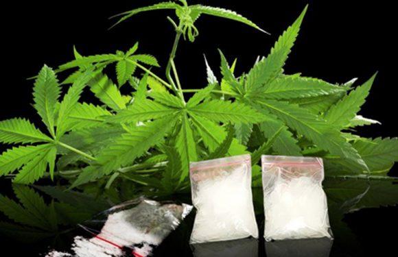 Berkas Perkara Tersangka Narkoba Masuk Meja Jaksa