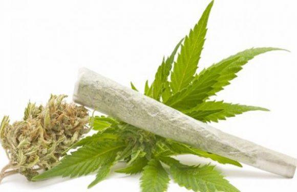 JPU Kejari Buru Resmi Menggiring Terdakwa Narkoba di Meja Hijau
