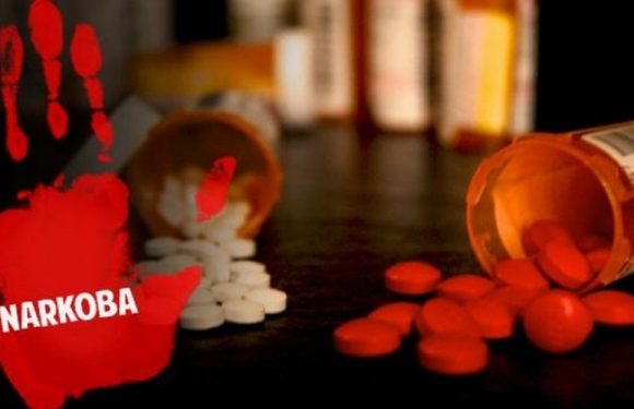 Diduga Pakai Narkoba,  BNNP Maluku Nyaris Buka-Bukaan Caleg Pemakai Narkoba
