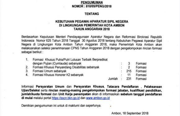 231 Formasi Untuk CPNS Kota Ambon
