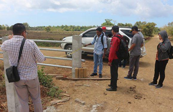 TP4D Monitor Proyek Kerbau Moa Distan Maluku di Werwaru