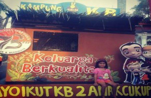 Lokakarya Rencana Pokja Kampung KB di Kota Ambon