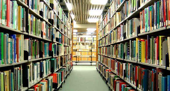 Pusat Informasi, Peningkatan Kapasitas SDM Perpustakaan & Arsip Prioritas