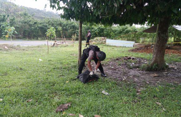 Granat Jenis Nanas Dibawah Pohon Lansa Diamankan