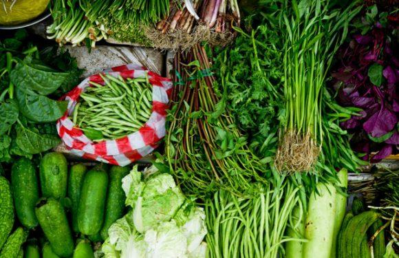Kandungan Residu Dibawah, Sayuran di Ambon Aman Dikonsumsi